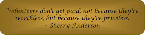 Volunteers don't get paid, not because they're worthless, but because they're priceless.  ~Sherry Anderson